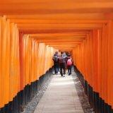 Easy Two ways to Fushimi-inari shrine from Kyoto.st
