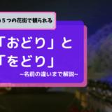 京都の花街で観れる、舞妓さんの5種類の「おどり」と「をどり」