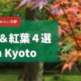 イマ行きたい、周りと差がつく人の少ない秋の紅葉・庭園が楽しめる京都のお寺4選